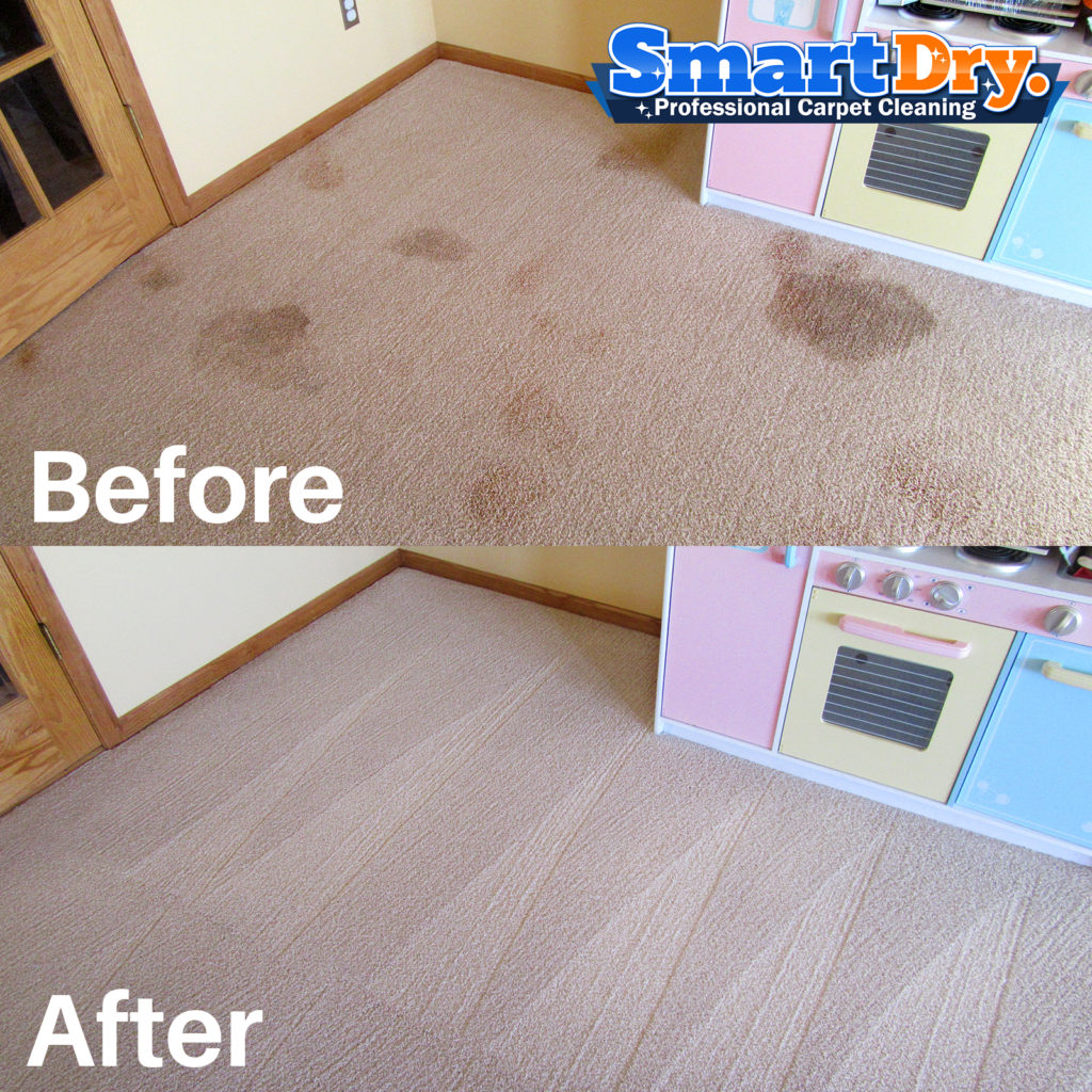 Carpet And Upholstery Stain Removal Tips San Diego