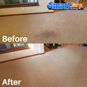 Commercial Carpet Cleaning Services Poway