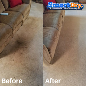 Professional Dry Carpet Cleaning Services In Chula Vista Ca 91910