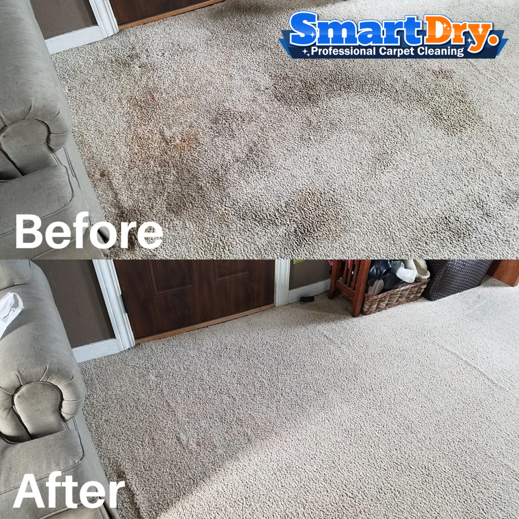 Commercial Carpet Cleaning Service San Diego Office
