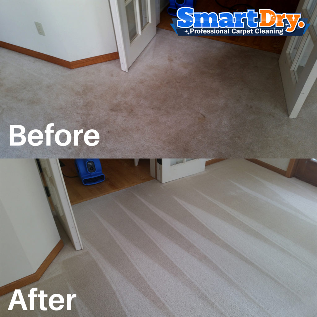 Healthy Choice Natural Carpet Cleaning Reviews