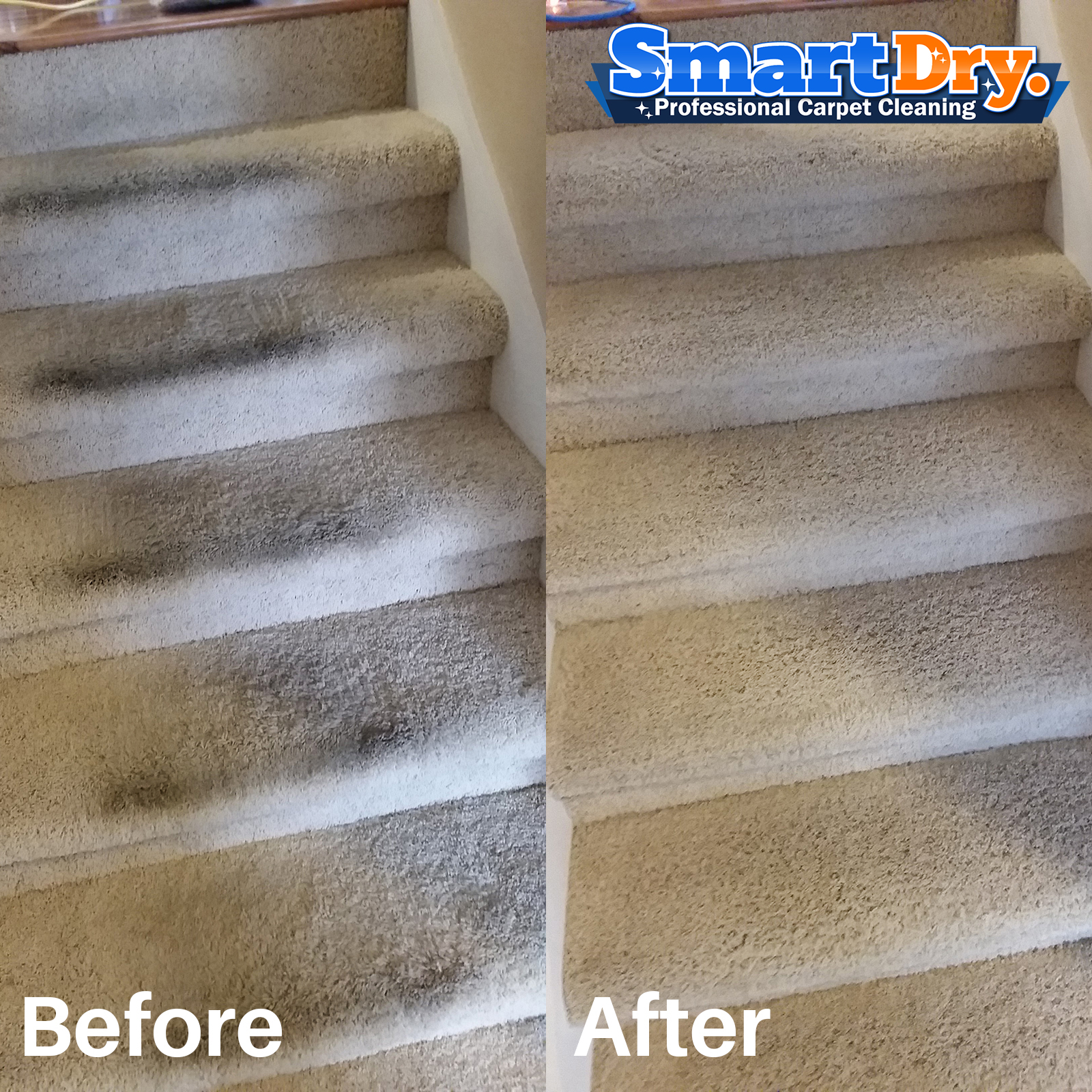 ▷🥇Carpet Cleaning San Diego, Carpet Cleaners San Diego Ca