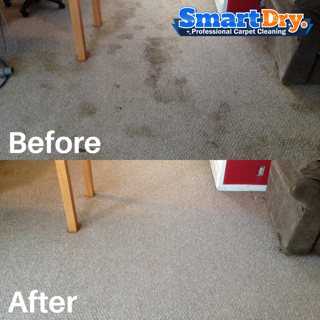 Carpet Cleaning San Diego Guarantee And Warranty 🥇smart