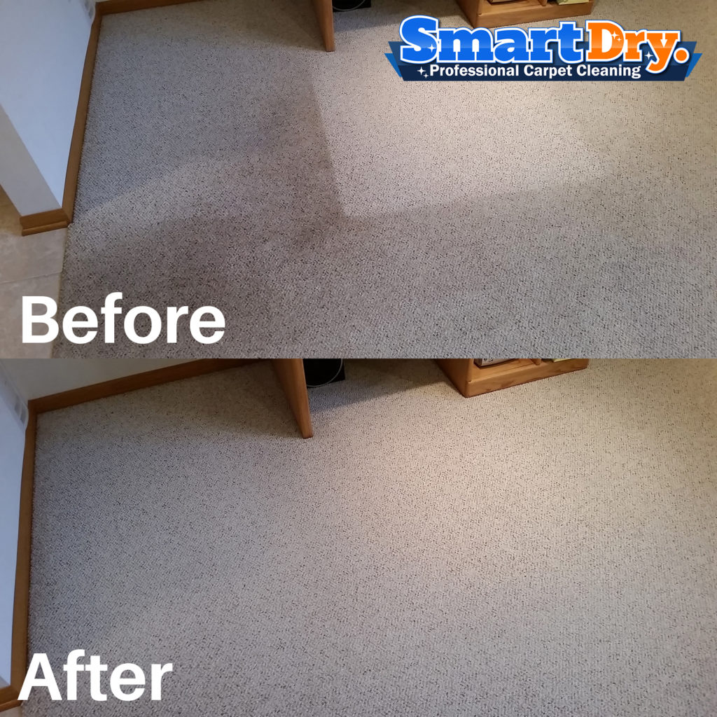 Professional Carpet Cleaning San Diego Best Carpet