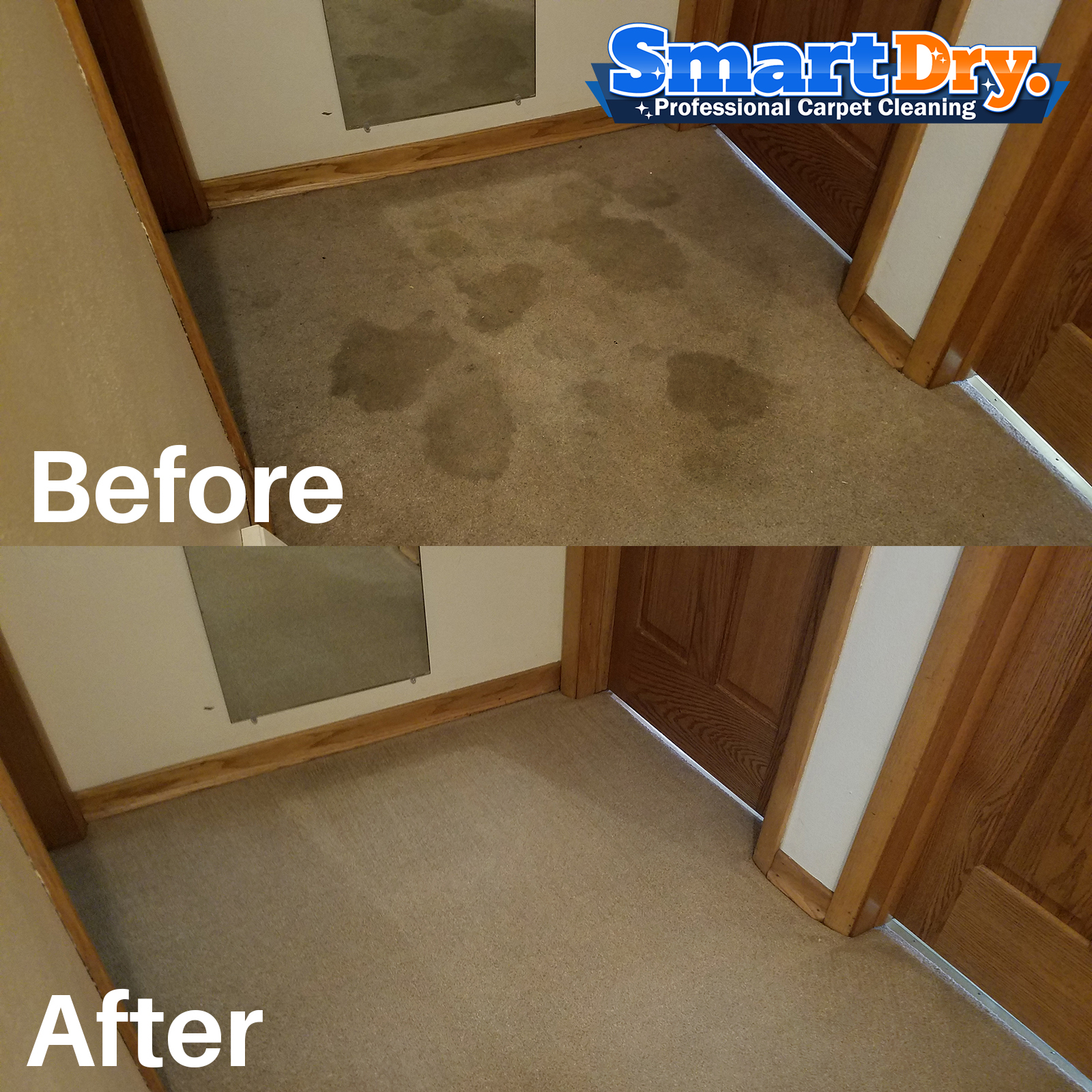 Carpet Cleaners San Diego Ca