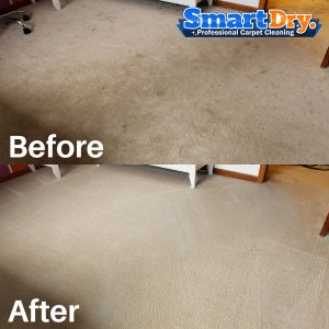 Carpet And Upholstery Cleaning Work San Diego Ca 🥇smart